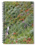 Subalpine Wildflowers Spiral Notebook
