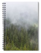 Sublime Beauty Spiral Notebook