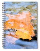 Submerged Sunset Spiral Notebook
