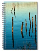 Submerged Trees At Sunset Spiral Notebook