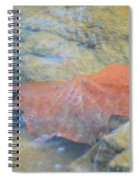 Submergence Spiral Notebook