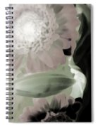Subterranean Memories 9 - Dreams Spiral Notebook