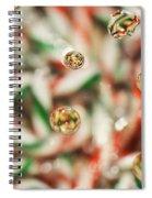 Sugar On Canes Spiral Notebook