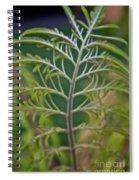 Sumac Frond Spiral Notebook