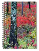 Sumac Slope And Lichen Covered Tree Spiral Notebook