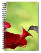 Summer Friend Spiral Notebook