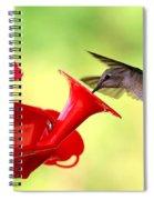 Summer Fun Hummingbird Spiral Notebook