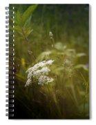 Summer Grasses Spiral Notebook