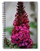 Summer Lilac Spiral Notebook