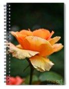 Summer Softness Spiral Notebook