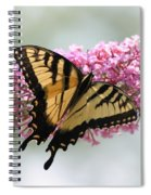 Summer Time Pleasures Spiral Notebook