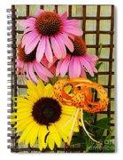Summer Trio  Spiral Notebook