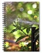 Summertime Refreshment Spiral Notebook