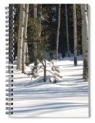 Sun And Shawdows  Spiral Notebook