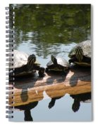 Sun Bathing Spiral Notebook
