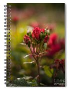 Sun In The Garden Spiral Notebook