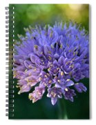 Sun Kissed Morning Spiral Notebook