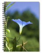 Sun On Morning Glory Spiral Notebook