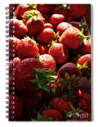 Sun Ripened Spiral Notebook