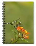 Sun Seeker Spiral Notebook