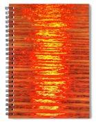 Sun Strings Spiral Notebook