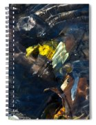 Sun Water Leaves And Mud Spiral Notebook
