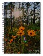 Sunburst On Sunflowers Spiral Notebook