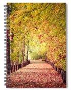 Sunday Stroll Spiral Notebook