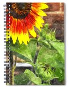 Sunflower 3 Sf3wc Spiral Notebook