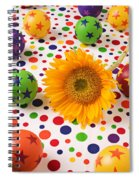Sunflower And Colorful Balls Spiral Notebook