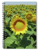 Sunflower And Honeybees July Two K O Nine  II Spiral Notebook