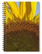 Sunflower Arch Spiral Notebook