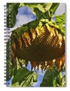 Sunflower At Fall Spiral Notebook
