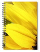 Sunflower Closeup In Landscape Spiral Notebook