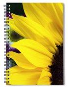 Sunflower Closeup Spiral Notebook