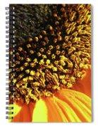 Sunflower Edge Spiral Notebook