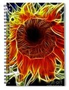 Sunflower Fractal Spiral Notebook