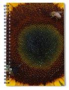 Sunflower Gathering Spiral Notebook
