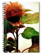 The Business Of Bees Spiral Notebook
