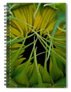 Sunflower Kisses Spiral Notebook