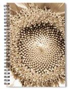 Sunflower Seeds Spiral Notebook