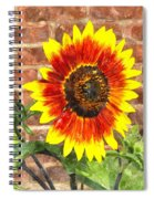 Sunflower Sfwc Spiral Notebook