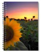 Sunflower Smoothie Spiral Notebook