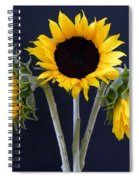 Sunflowers Three Spiral Notebook
