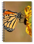 Sunlight Colors Spiral Notebook