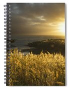 Sunlight Glowing At Sunset And Spiral Notebook