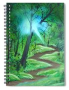 Sunlight In The Forest Spiral Notebook