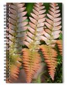 Sunlit Red Fern Spiral Notebook