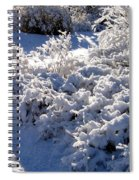 Sunlit Snowy Sanctuary Spiral Notebook