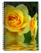Sunny Delight And Vase 2 Spiral Notebook